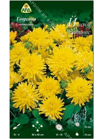 Георгина Йеллоу Хэппинес (Dahlia Yellow Happiness)