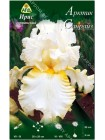 Ирис германский Арктик Санрайз (Iris germanica Arctic Sunrise)
