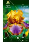 Ирис германский Браун Лассо (Iris germanica Brown Lasso)