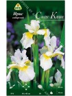Ирис сибирский Сноу Квин (Iris sibirica Snow Queen)