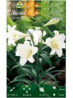 Лилия Уайт Хэвен (Lilium longiflorum White Heaven)