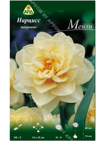 Нарцисс Менли (Narcissus Manly)