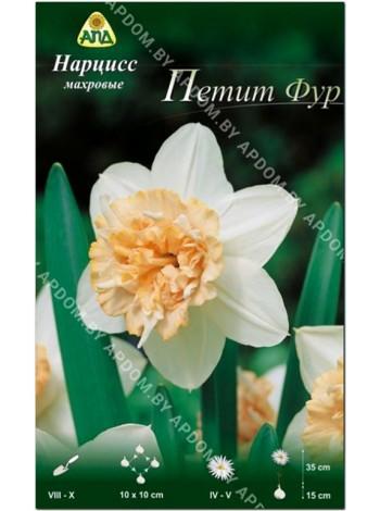 Нарцисс Петит Фур (Narcissus Petit Four)