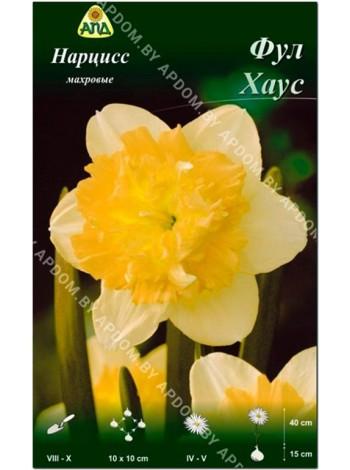 Нарцисс Фул Хаус (Narcissus Full House)