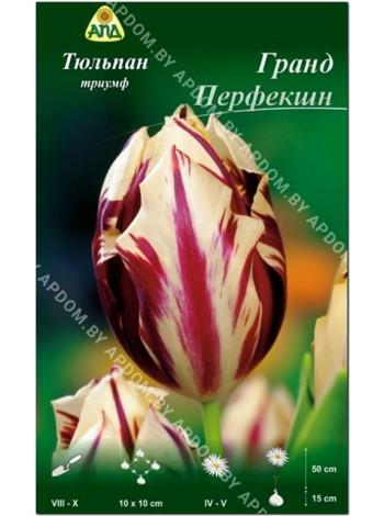 Тюльпан Гранд Перфекшн (Tulipa Grand Perfection)