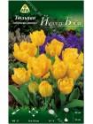 Тюльпан Йеллоу Бэби (Tulipa Yellow Baby)