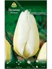 Тюльпан Пуриссима (Tulipa Purissima)