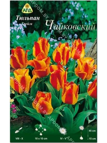 Тюльпан Чайковский (Tulipa Tschaikovsky)