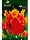 Тюльпан Фабио (Tulipa Fabio)