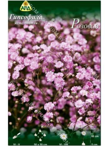 Гипсофила метельчатая Розовая (Gypsophilla paniculata Pink)