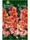 Гладиолус Календа Фриззл (Gladiolus Calendar Frizzle)