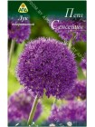 Лук декоративный Пепл Сенсейшн (Allium aflatunense Purple Sensation)