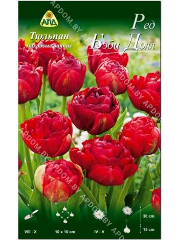 Тюльпан Ред Бэби Долл (Tulipa Red Baby Doll)