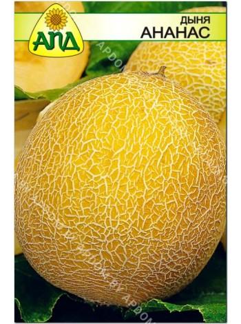 Дыня Ананас (Cucumis melo L.)
