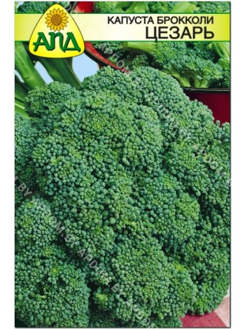 Капуста брокколи Цезарь (Brassica oleracea var.cymosa)