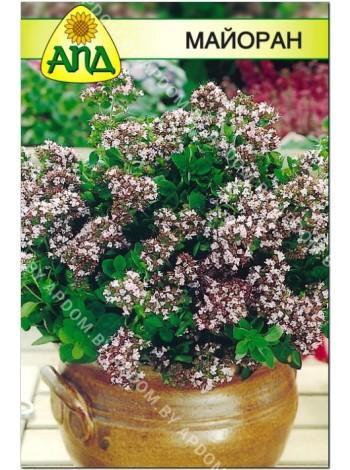 Майоран (Origanum mayorana L.)