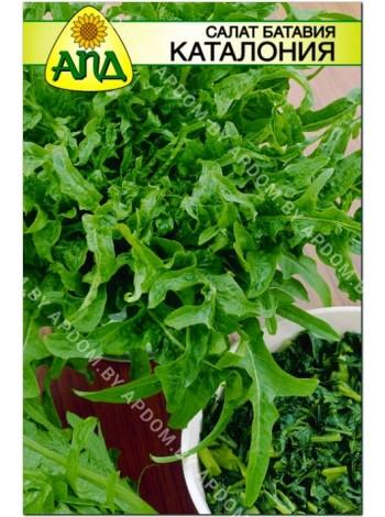 Салат батавия Каталония (Lactuca sativa)