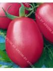 Томат Де-барао Розовый (Lycopersicon esculentum)