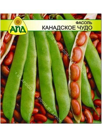 Фасоль Канадское Чудо (Phaseolus vulgaris L.)