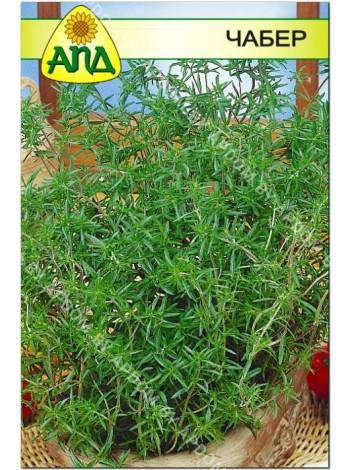 Чабер (Satureja hortensis L.)
