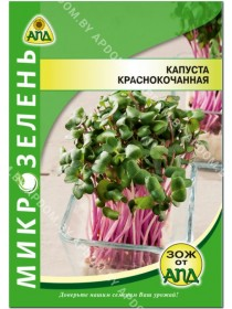 Микрозелень Капуста краснокочанная