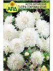 Астра китайская Тысяча Сокровищ белая (Callistephus chinensis)