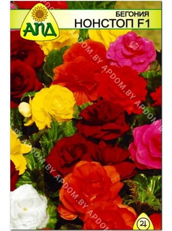 Бегония Нонстоп F1 (Begonia tuberhybrida)