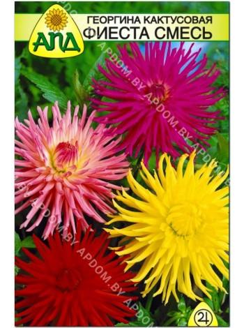 Георгина кактусовая Фиеста смесь (Dahlia variabilis)