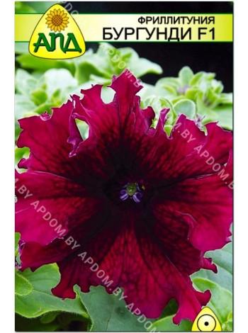 Фриллитуния бургунди F1 (Petunia x hybrida)
