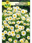 Хризантема болотная (Chrysanthemum paludosum)